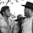 <em>La Forêt interdite</em>, film écolo et maudit de Nicholas Ray, sort enfin en DVD chez Wild Side, augmenté d'un livre remarquable du cinéphile Patrick Brion. Fais gaffe, t'as un crotale sur l'épaule !