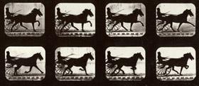 La chronophotographie d'Eadweard Muybridge