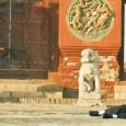 Quatre destins, aujourd'hui, en Chine. Dahai est un mineur impuissant face à la corruption des dirigeants qui appauvrissent son village. Zhou San, un travailleur migrant qui garde...