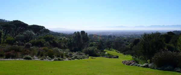 Le jardin botanique de Capetown