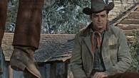 Aller à l'essentiel, c'est ce qui rassemble tous ces westerns. S'ils n'excèdent pas les 80 minutes, les thématiques proposées n'en demeurent pas moins profondes. Donnez-nous du grain à moudre, nous...