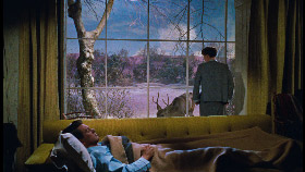Tout ce que le ciel permet, de Douglas Sirk