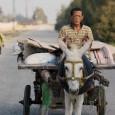 Il faut bien l'avouer, depuis quelques semaines, alors que la seule information disponible sur <em>Yomeddine</em> était qu'il s'agissait d'un road-movie égyptien avec des acteurs lépreux non professionnels, les fantasmes et les...